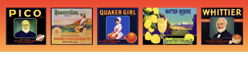 Whittier Citrus Box Label Banner